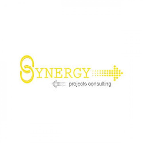 Synergy Projects Consulting
